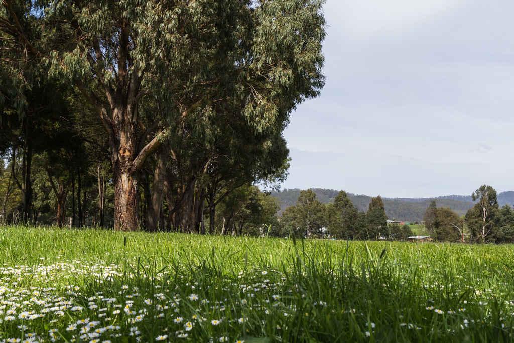 Heritage_Park-1900-3244