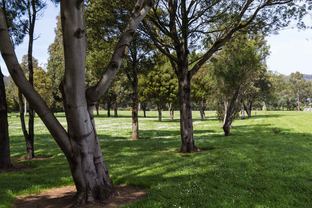 Heritage_Park-1900-3248